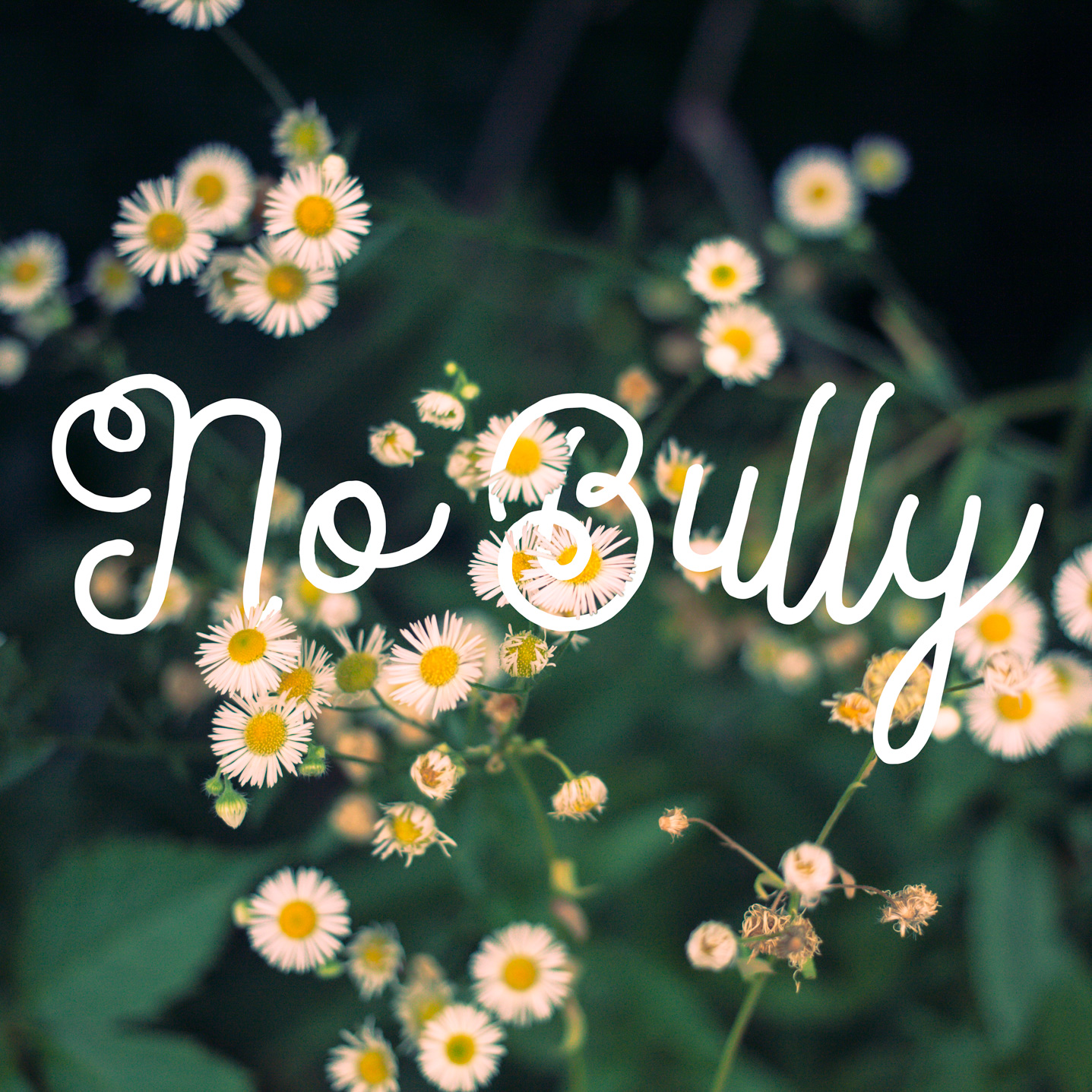 nobully
